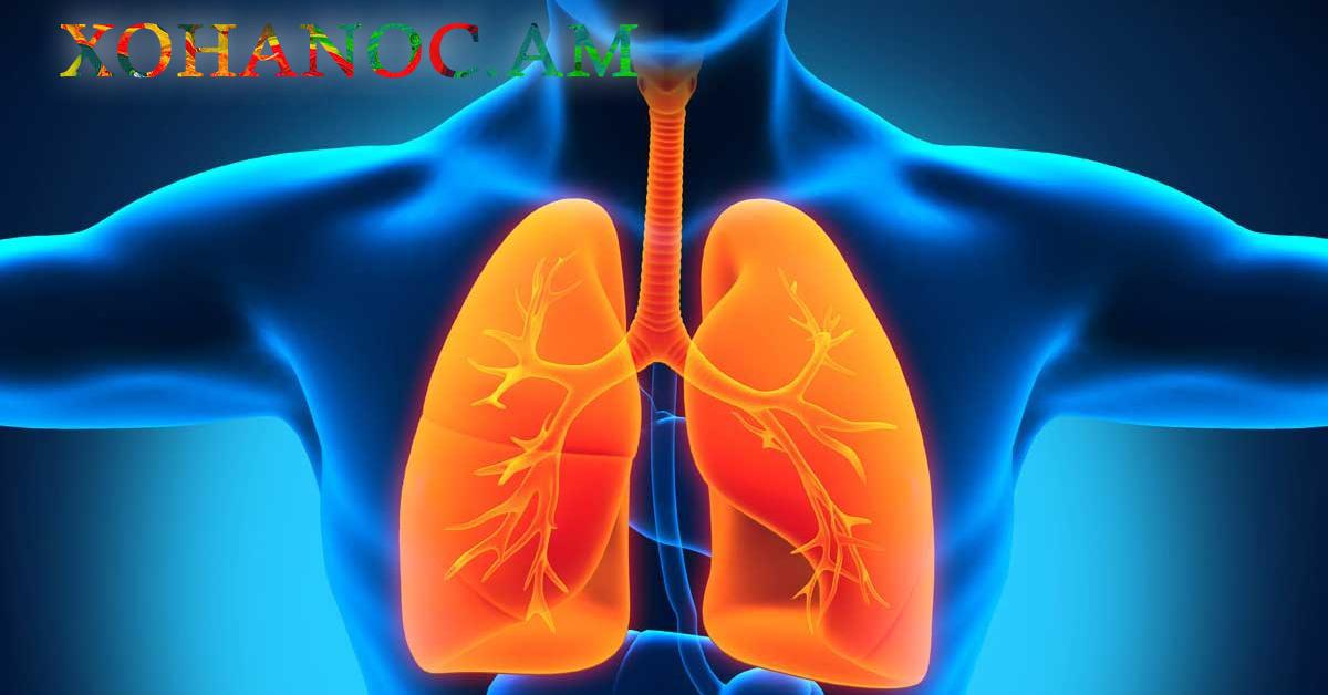 Օրվա մեջ մեր թոքերում բավականին թունավոր նյութեր են հավաքվում. Սոխը կօգնի վերացնել դրանք և մաքրել թոքերը