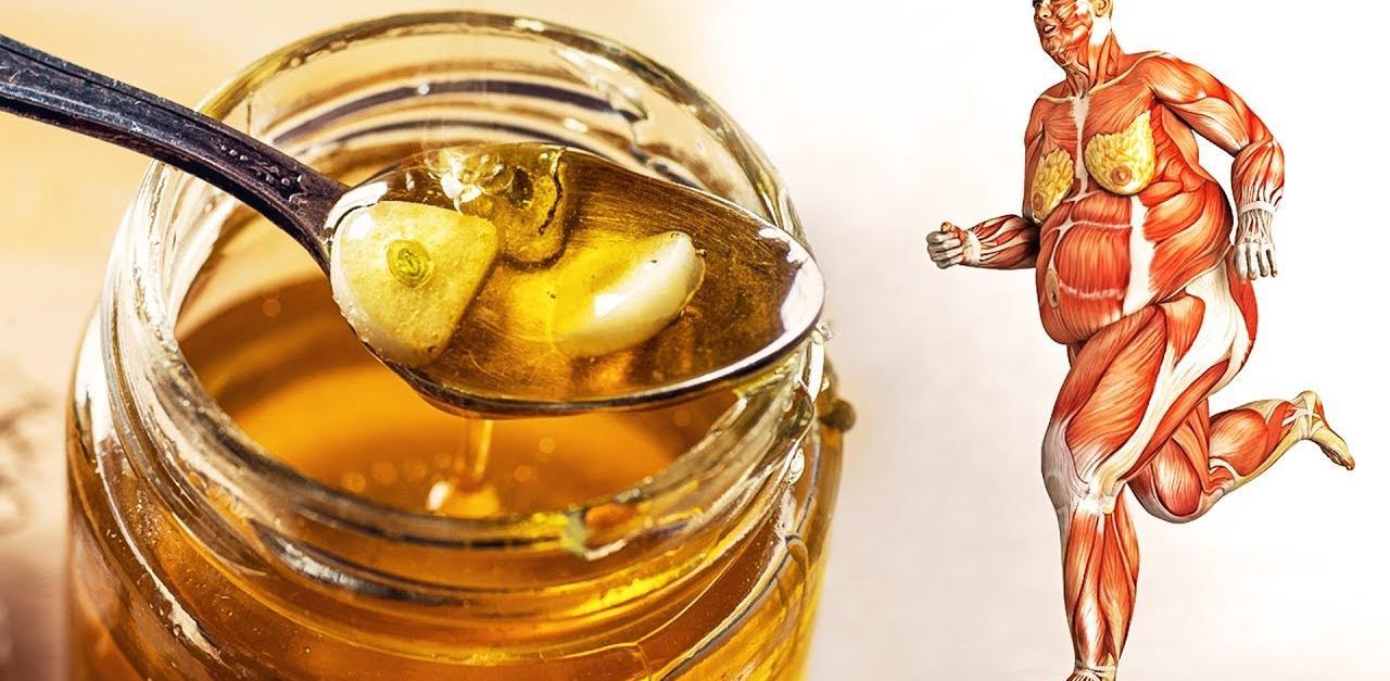 Մեղր և սխտոր. Այս անփոխարինելի միջոցի մասին պետք է իմանան բոլորը. Հրաշք դեղամիջոց օրգանիզմի համար