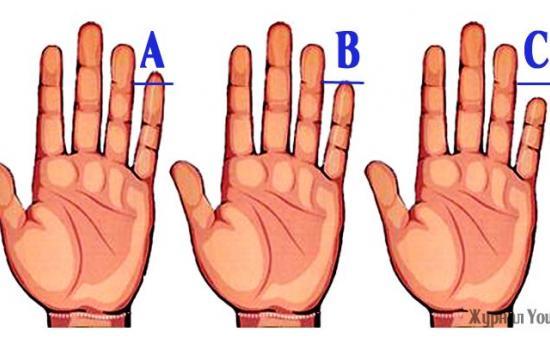 Այն, ինչ Ձեր ձեռքի ճկույթը պատմում է Ձեր մասին, ուրիշ ոչ մի տեղից չեք իմանա