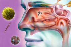 Բնական միջոցներ, որոնք կօգնեն բուժել քիթը