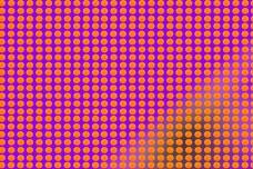 Թեստ։ Եթե կարողանաք գտնել կլպած նարինջը 5-7 վայրկյանում, ապա դուք իսկական հանճար եք