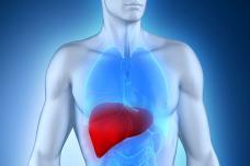 Կանխարգելեք լյարդի ճարպակալումը՝ ընդամենը 2 բաղադրիչով